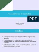 Process Consultas
