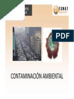 MINSAL-Contaminacion-Ambiental.pdf