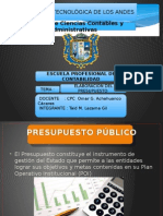 ELABORACION DEL PRESUPUESTO PERU