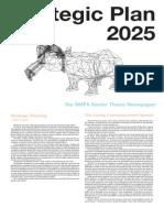 Strategic Plan 2025