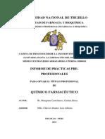 Informe de Prácticas Pre-Profesionales - lima Cinthia Marquina