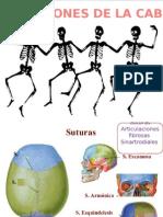 imágenes de articulaciones de la cabeza.
