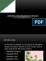 Aspergilosis Pulmonar Crónica
