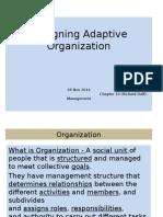 Designing Adaptive OrganizationChap 10_28Nov