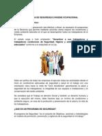 Programa_Seguridad_e_Higiene_Ocupacional.pdf