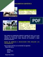 MEJORAMIENTO CLASE 4-3-.ppt