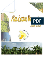 Plan_rector Platano 2010