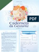 caderneta_gestante