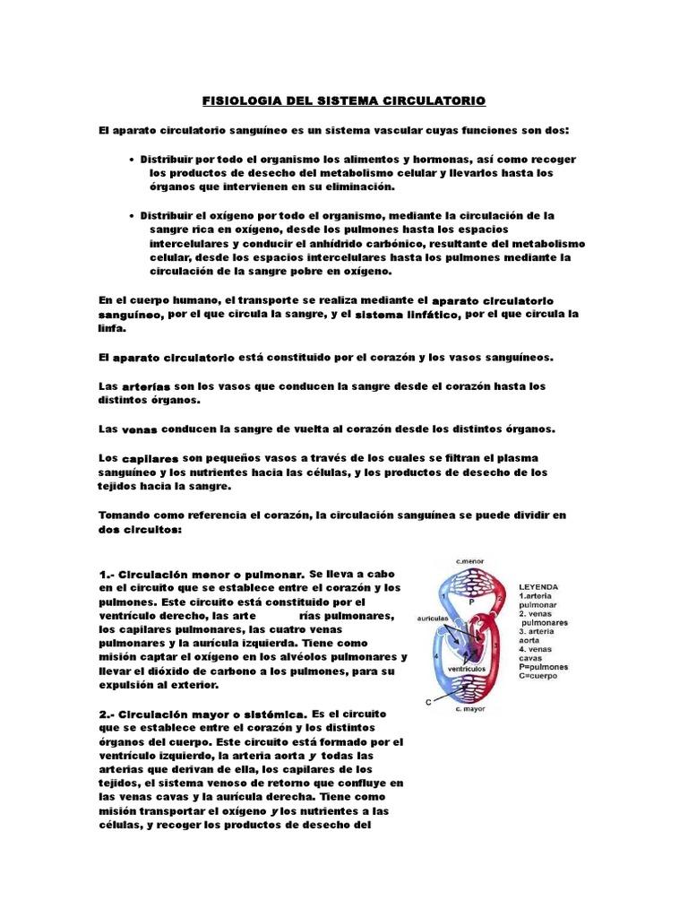 Circuito Vascular : Fisiologia del sistema circulatorio.docx