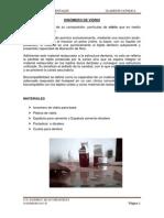 11. Ionomero de vidrio.pdf
