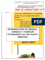 Informe 2 Completo