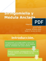 RM Disertación Sirnomielia