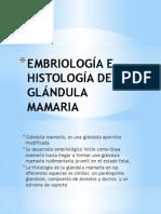 Embriología e Histología de La Glándula Mamaria