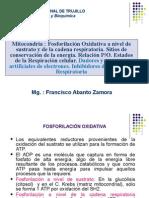 Dadores Aceptores y P/O