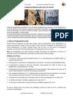 PrÃ_ctica de PL Solver_01