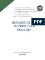 Higiene y Seguridad Industrial-1