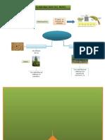 Mapa Proceso Del Papel