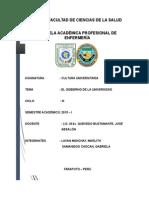 EL-GOBIERNO-DE-LA-UNIVERSIDAD.docx