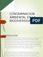 Biodiversidad Contaminacion Ambiental EXPONER-G6