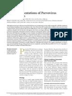 Parvovirus B19 _2007 02feb 01 Parvovirus B19