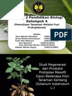 PPT Fusi Protoplasma
