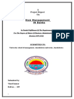 Project Report on Risk Mgmt in Banks