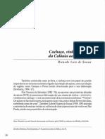Cachaça, Vinho e Cerveja, Da Colônia Ao Século XX, De RICARDO L. de SOUZA