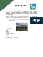 Agricola Pampa Baja