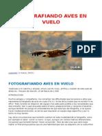 Fotografiando Aves en Vuelo-  Leopoldo de Castellví Kahno