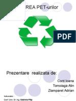 Reciclarea Pet Urilor