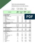 Presupuesto Organico y Convencional[1]