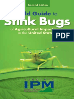 Pentatomidae Field Guide
