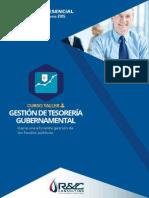 CURSO PRESENCIAL Gestión de Tesorería Gubernamental - Inicio 03 de junio
