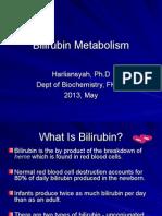 metabolisme bilirubin