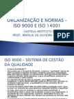 Organizacao e Normas Iso 9000 e 14001 (1)