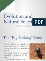 Natural Selection and Darwin