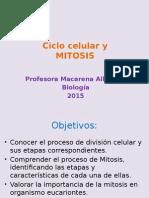 Ciclo Celular y Mitosis (2)