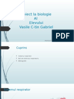 Proiect la biologie sistemul respirator