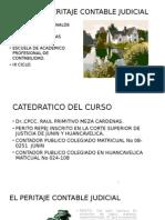 CURSO DE PERITAJE CONTABLE JUDICIAL.pptx