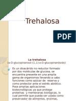 La Trehalosa