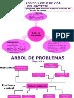 Marco LOGICO esquemas deisi cancer de mama.pptx