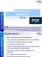 Ks4 Bones Physical Education