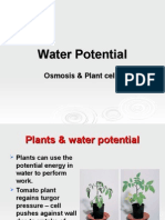 WaterPotential (1)hvb