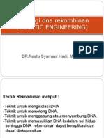 DNA Rekombinan