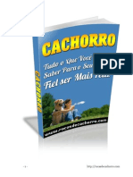 Ebook-Racas-de-Cachorro.pdf