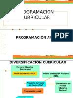 programación-curricular