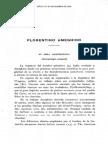 Ameghino Por Castellanos 1916