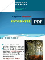 _Fotosíntesis.ppt_.ppt
