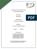 Práctica 2 Hidrología Polígonos de Thiessen