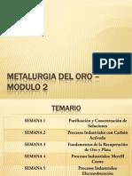Metalurgia Del Oro – Modul 2 Temario